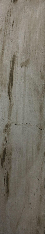 "Item #13592 - 6"" x 24"" Fossilwood Moon Porcelain Plank Image"